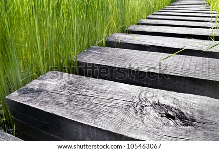 Path made of wood over water in a field