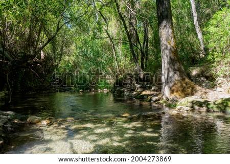 path of the majaceite river in the municipality of El Bosque, Cadiz Foto stock ©