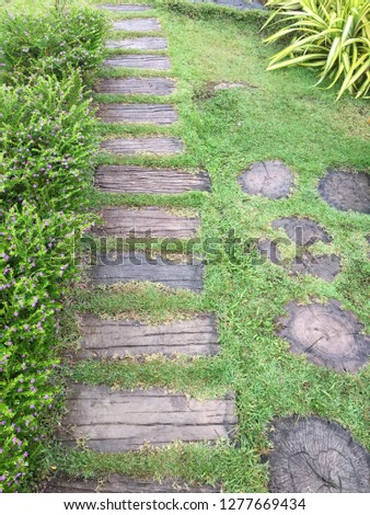 Path on the grass, Path in the garden #1277669434