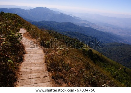 Path on the mountains of the north of thailand #67834750