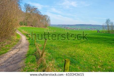 Path through a field in spring #610343615