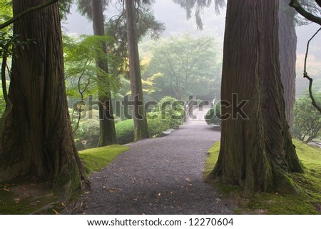 Path through a forest in the Japanese garden in Portland Oregon
