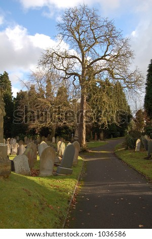 Path through a graveyard with lots of headstones leaning over at various angles casting shadows.