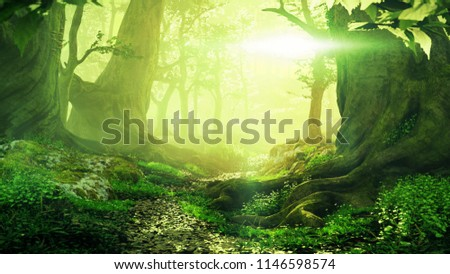 path through magical forest at sunrise, beautiful old trees fantasy landscape, 3d illustration #1146598574