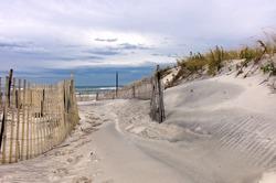 Path through sand dunes on a beach on Long Island, New York