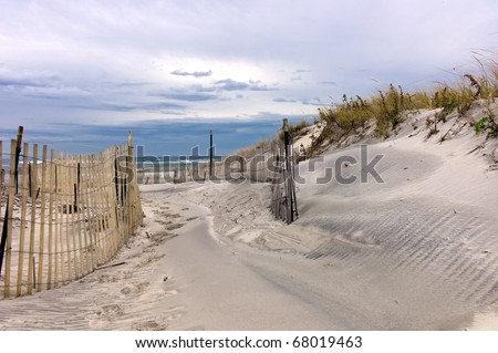 Path through sand dunes on a beach on Long Island, New York