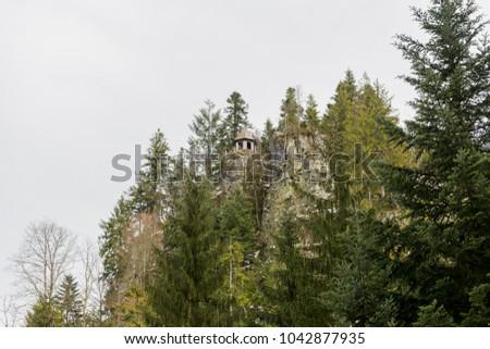 path to Burgbach waterfall frozen in wintertime in Germany in Bad Rippoldsau #1042877935