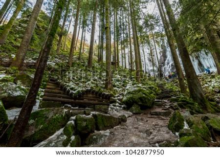 path to Burgbach waterfall frozen in wintertime in Germany in Bad Rippoldsau #1042877950