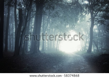 Path to light through a dark cold forest at night