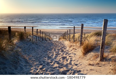 path to north sea beach in gold ...