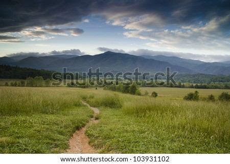 Path to the Mountains