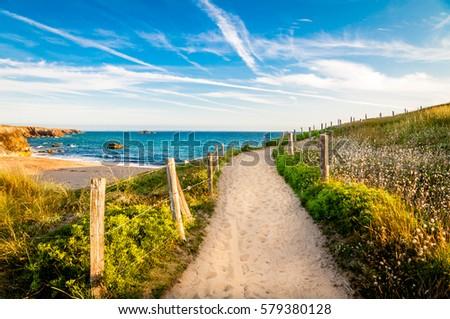 Path to the ocean, Quiberon's landscape, Bretagne, France Stock fotó ©