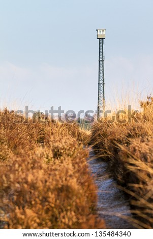 Path towards the observation tower (brandtoren) towering over the landscape at the Posbank and Veluwe zoom in the Netherlands