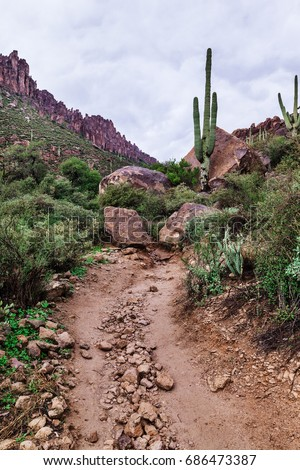 Path up to the mountains, Arizona landscape