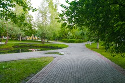 Paths in the Park zone