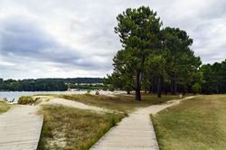 Paths of wooden planks on the sand and grass of the beach called