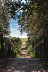 Pathway Down to the Beach