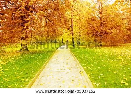 Pathway in autumn park.