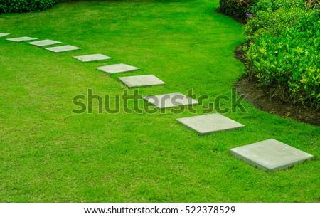Pathway in garden,green lawns with bricks pathways,garden landscape design #522378529