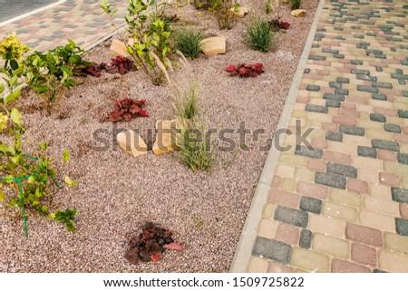 Pathway in green garden with bricks pathways #1509725822