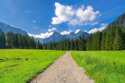 Pathway in mountains. Mountain trail running through the White Water Valley Bielovodska dolina) in Tatras, Slovakia.