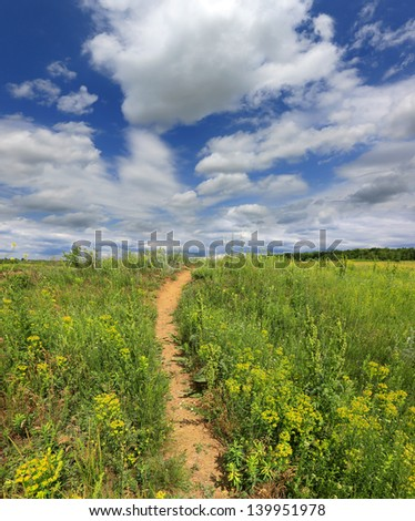 Pathway on green meadow