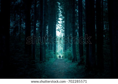 Pathway through the dark mystery spruce forest. Group of people are walking through. #702285571
