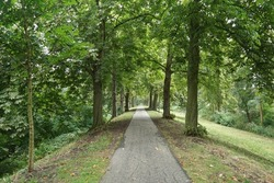 Pathway through trees on the former city wall and fortifications in the city of Gorinchem in the Netherlands