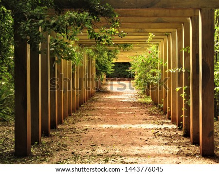 Pathway to glory- An ornamental  sequential arrangement of wooden casing/frame which allows golden yellow sunshine to shine the pathway and decorative plants along the sides, adds on beauty.  #1443776045