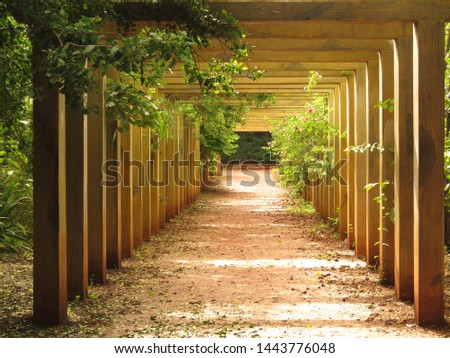 Pathway to glory- An ornamental  sequential arrangement of wooden casing/frame which allows golden yellow sunshine to shine the pathway and decorative plants along the sides, adds on beauty.  #1443776048
