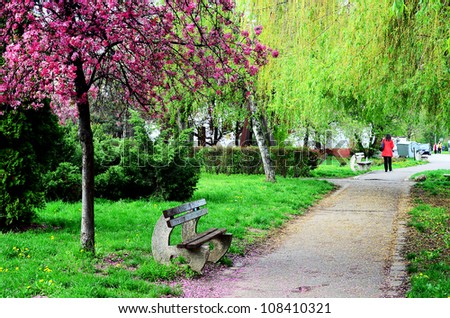 Pathway with a bench in a beautiful park in Romania