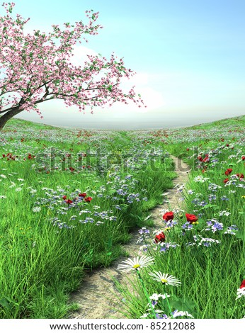 Pathway with cherry blossom tree