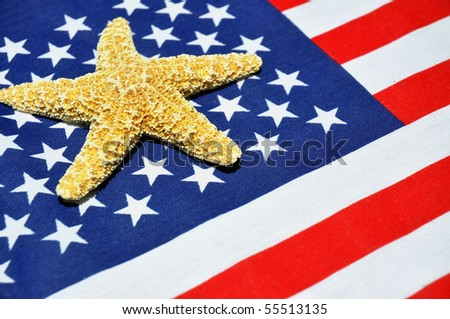 Patriotic Summertime concept. Starfish on flag background