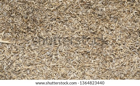 pattern grain, background grain