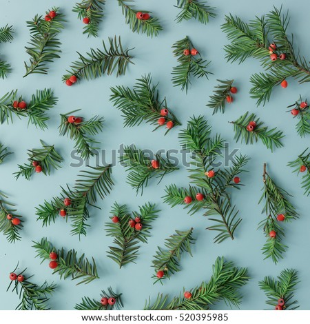 Pattern made of christmas tree branches and red berries on blue background. Christmas concept. Flat lay.