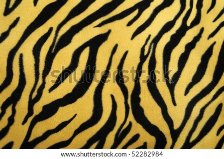 pattern of a tiger skin, excellent wildlife background