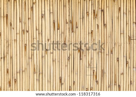 pattern of bamboo background in yellow color