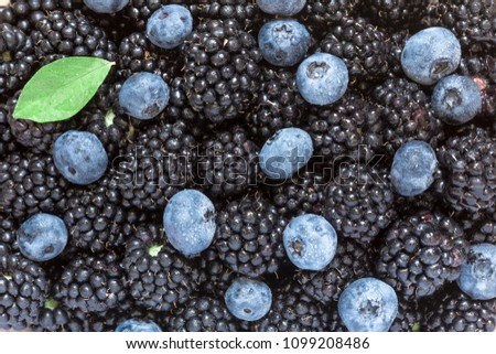 Pattern of freshly picked blueberries and blackberries, cowered with water drops. Juicy and fresh berries with green leave. Concept for healthy eating and nutrition. #1099208486