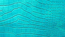 pattern of green crocodile skin.