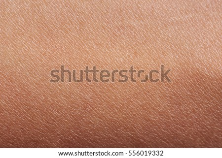 Pattern of human dark skin with cells and lines texture #556019332