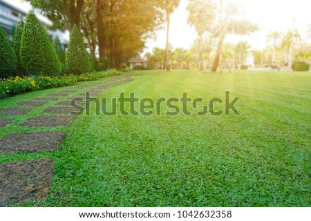 Pattern of Laterite stepping stone on a green Lawn backyard in the public park, Ficus and shurb on the left , Trees in background under evening sunlight   #1042632358