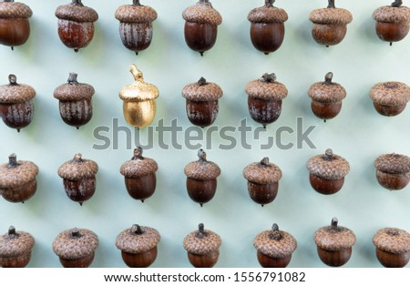 Pattern of oak tree acorns on natural green background with one golden acorn in the middle #1556791082