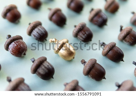 Pattern of oak tree acorns on natural green background with one golden acorn in the middle #1556791091