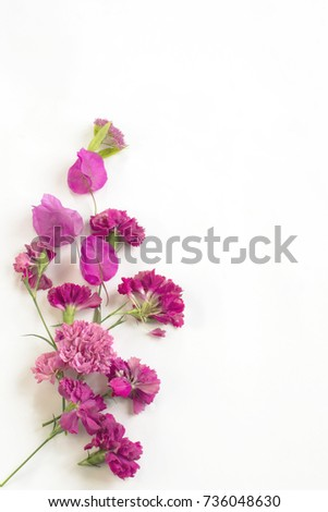 pattern of pink flowers on a white background #736048630