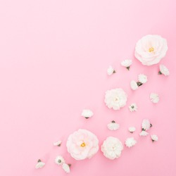 Pattern white white roses on pastel pink background. Flat lay, top view.