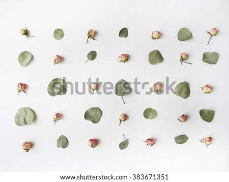Pattern with green leaves and pink roses at white background. Flat lay, top view