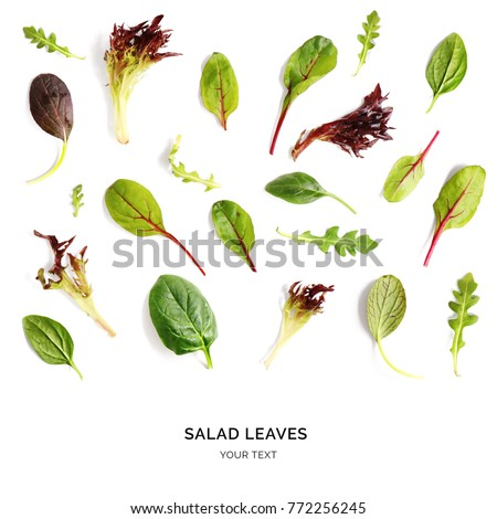 Pattern with salad leaves. Vegetable abstract background. Spinach,  lettuce, rucola on the white background.