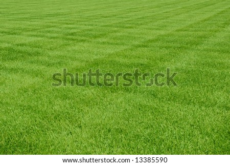 Pattern Ideas for Mowing the Lawn | eHow - eHow | How to Videos