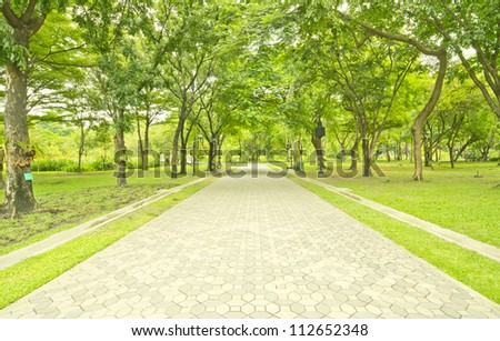 Paved Path in a Beautiful Formal Garden