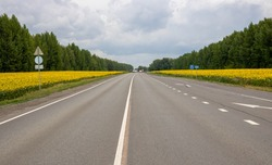 Paved road leading along the sunflower field. Country road in the fields. Many yellow sunflowers on a large green field. Summer harvest, agriculture and farming. Road in the sunflower field.
